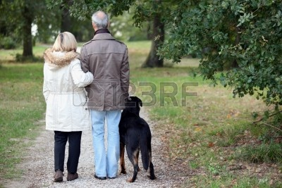 11390526-older-couple-walking-a-dog
